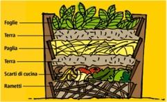 compost6